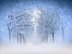 Winter Storm 2013