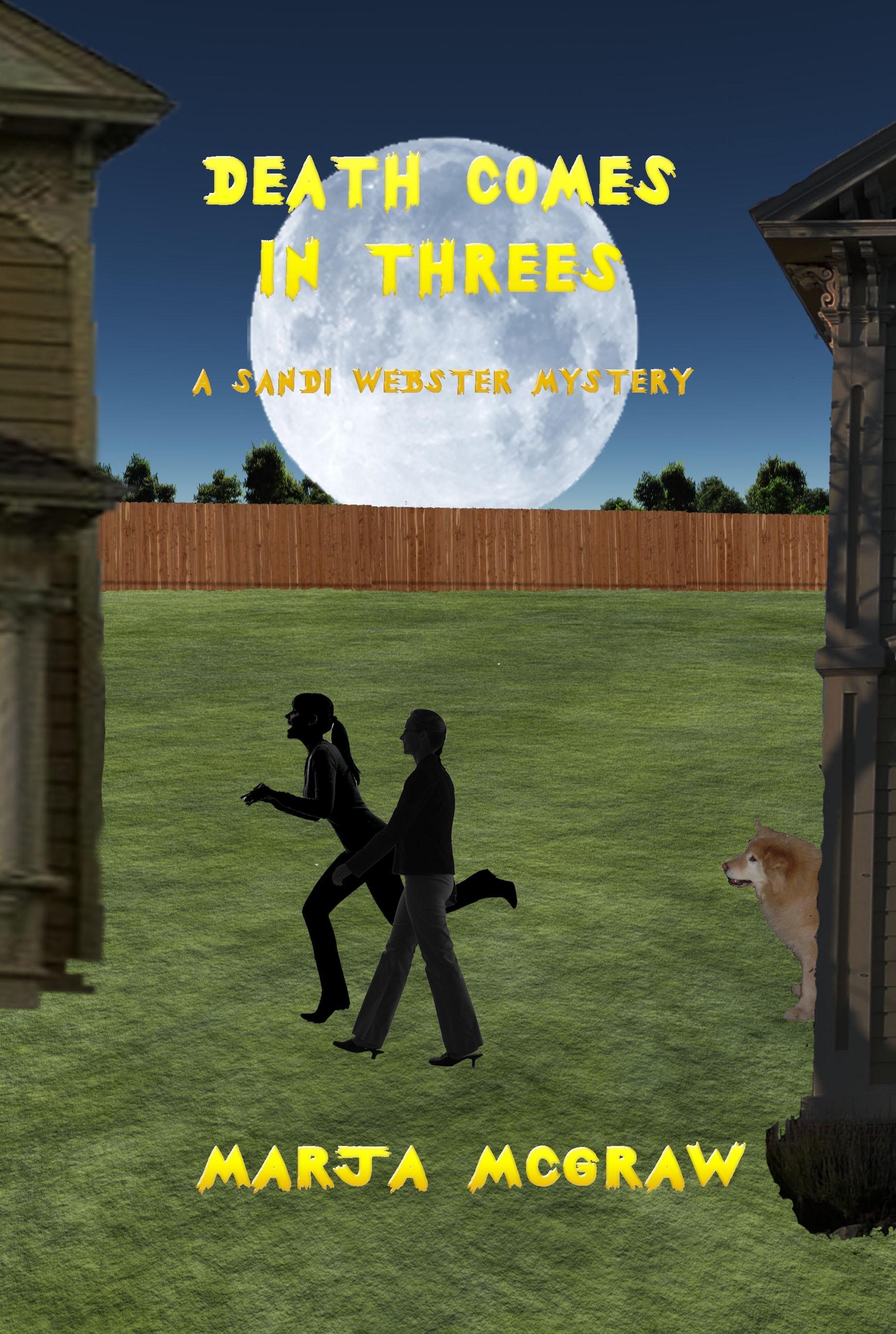 A Well-Kept Family Secret (The Sandi Webster Mysteries Book 1)