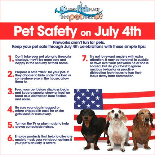 pet safety 4th july