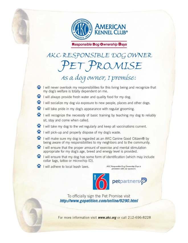 pet_promise