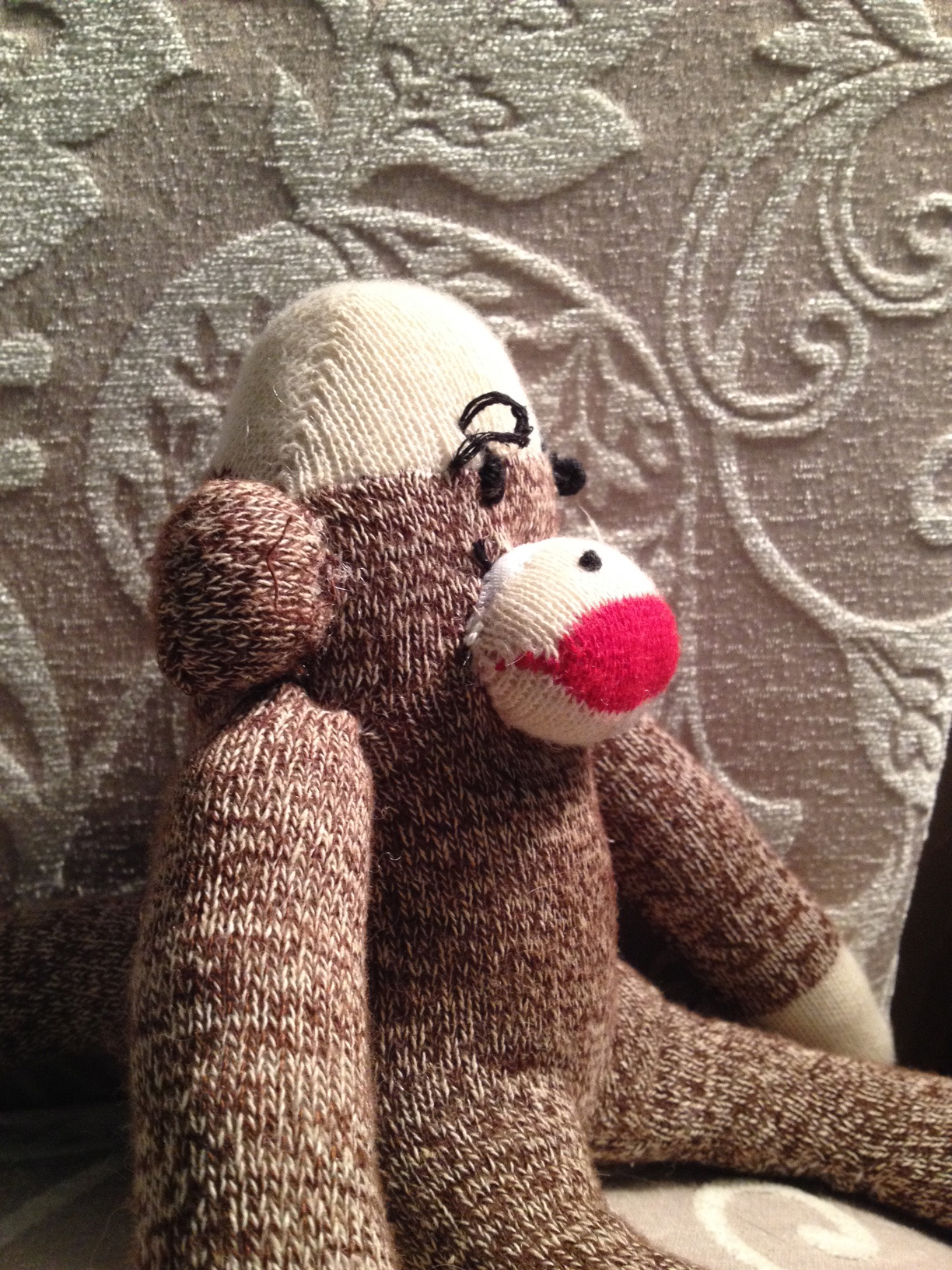 Then A Few Months Later She Received Sock Monkey And Suddenly It Was Game On Thanks Again To The Sponsors Of Humane Society Ozarks Who